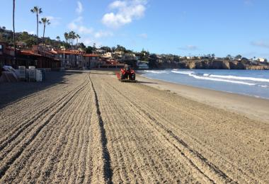 Beach after grooming, with rake lines visible. Credit: Monique Myers