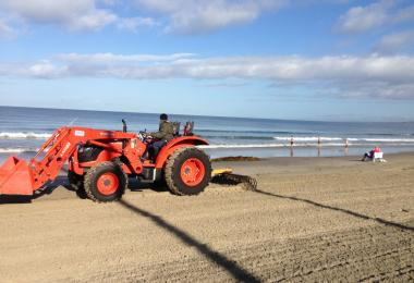 Beach grooming machinery, with rake behind and scoop in front. Credit: Monique Myers